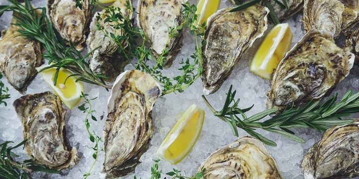 8 Foods That Your Hair Needs and Loves Oysters