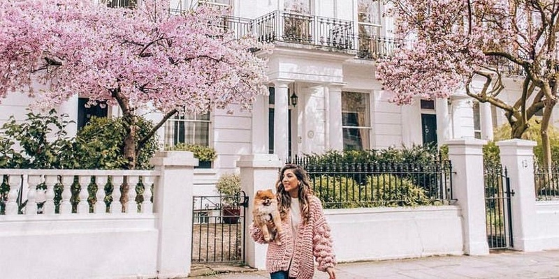 5 Reasons for an Instagrammer to Visit London Nice houses in West London